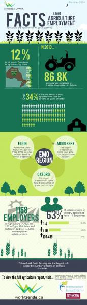 agriculture infographic